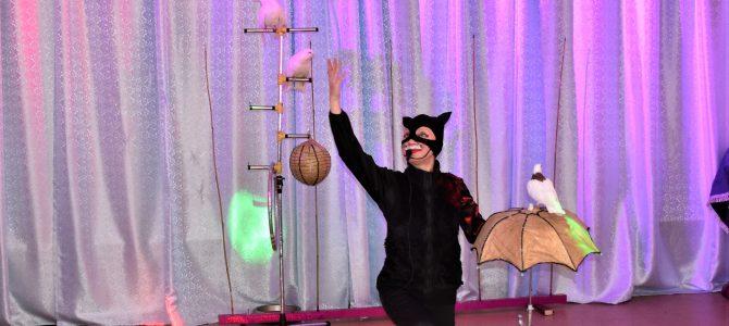 Цирковое представление «В мире иллюзий».